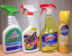 WIndex, Pledge, Shout