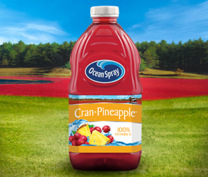 cran-pineapple-cranberry-pineapple-juice-drink-15739